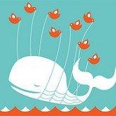 Nous cursos sobre Facebook i Twitter